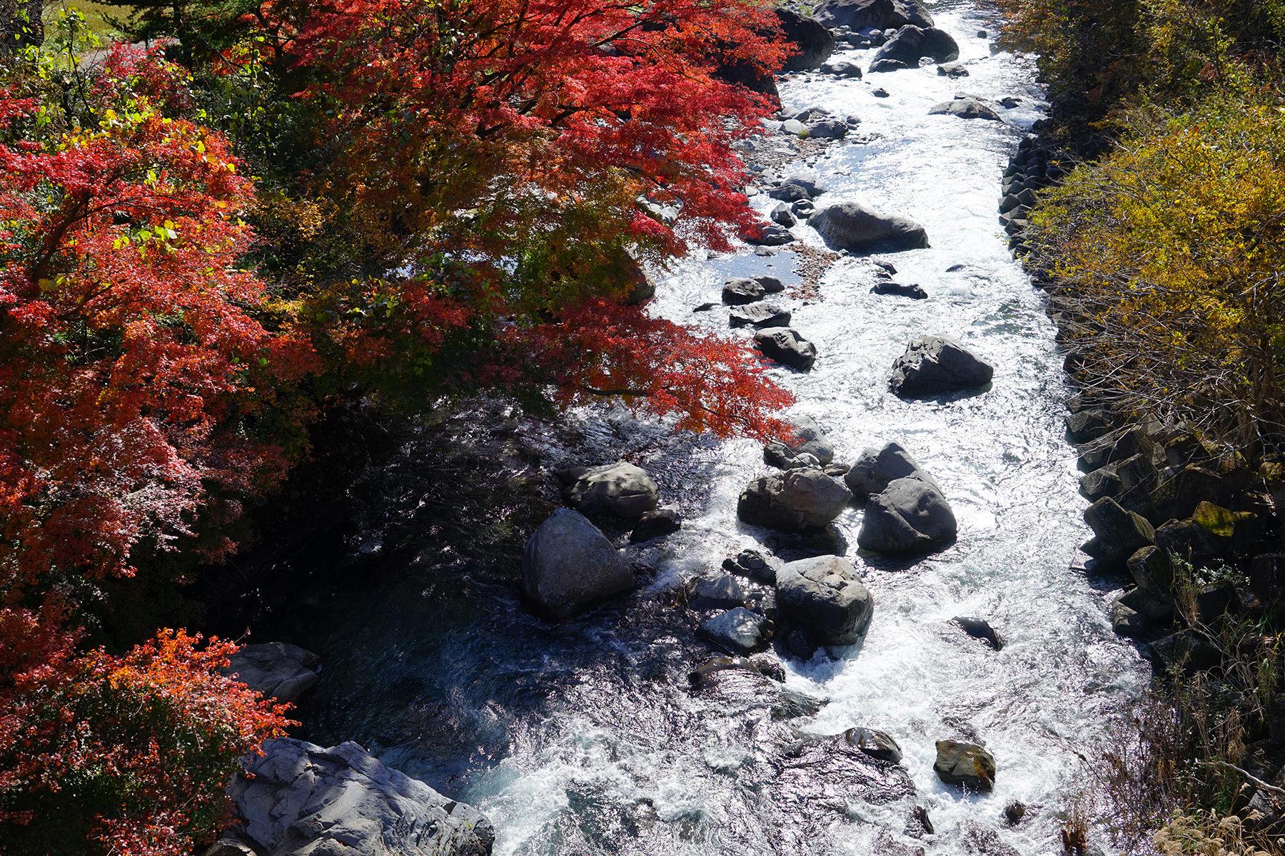 秋-2 紅葉と四万川