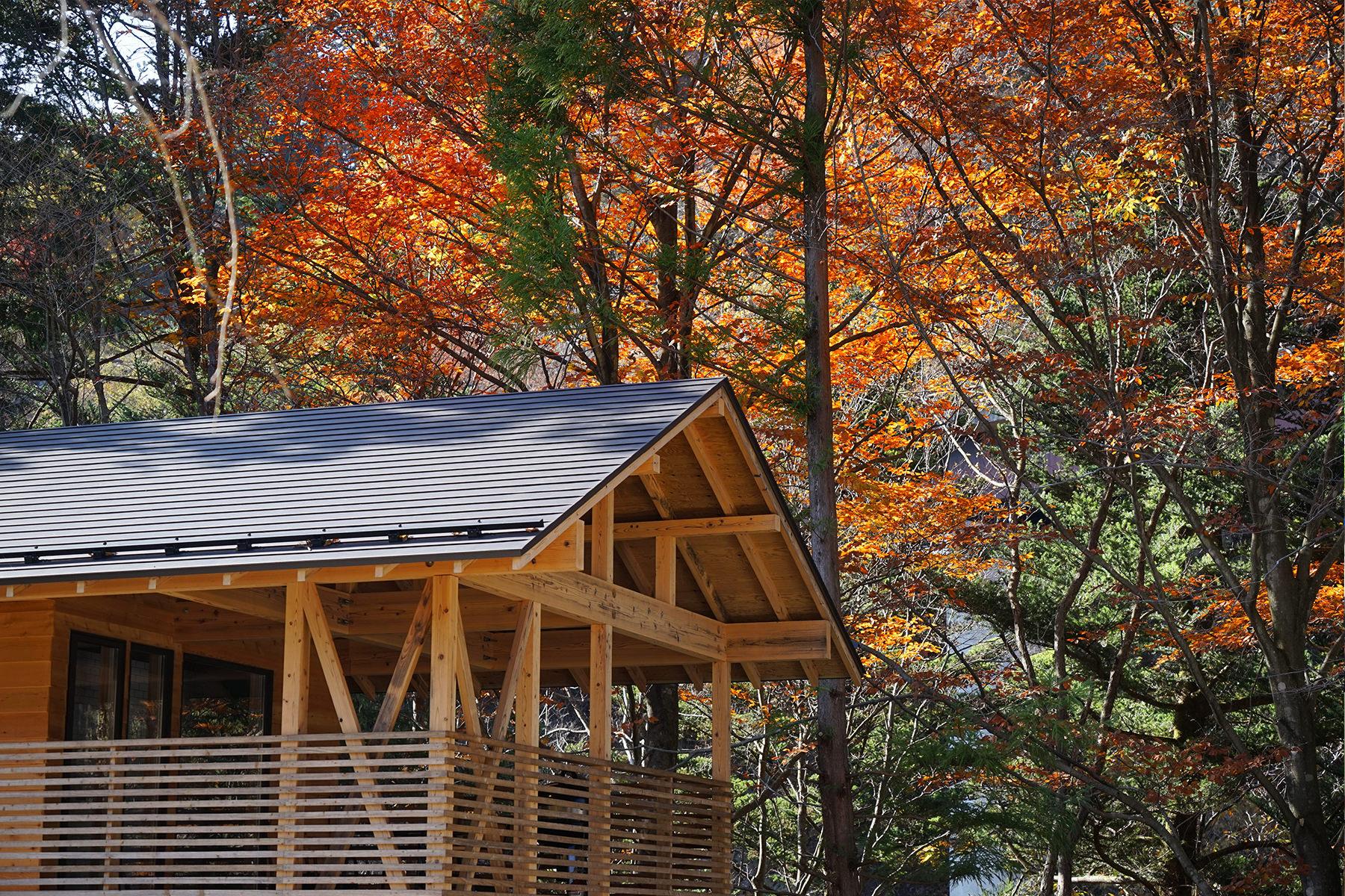 秋-4 紅葉とメゾネット